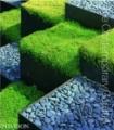 The Contemporary Garden by Phaidon Editors