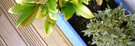 Garden & Landscape Directory - Garden Making