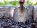 Garden spade. Photograph by walkersalmanac at Pixabay