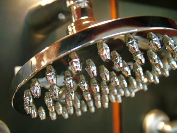 Shower head. Photograph by Lotus Head