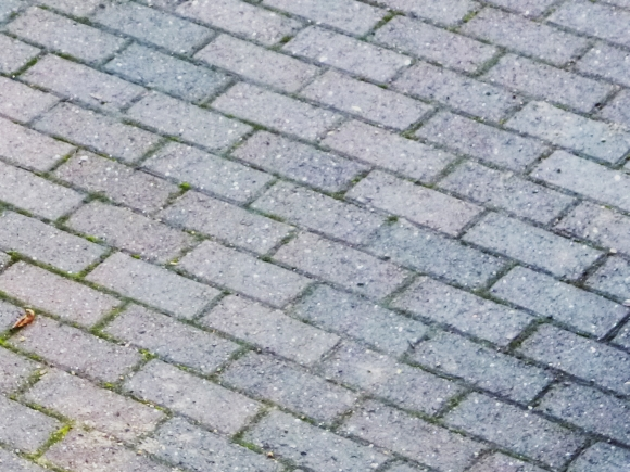 Block paved driveway. Photograph by Graham Soult