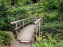 Bridge in a Japanese garden. Photograph by Skeeze