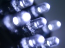 White LEDs. Photograph by Tristan Benninghofen