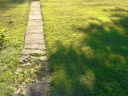Broken garden paving. Photograph by Josh Cantrell