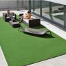 Express Grass
