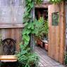 Vignette: Garden gate. Photograph by Lyn Belisle